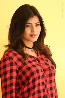 Actress Hebah Patel Stills in Blue Denim Jeans at Nanna Nenu Naa Boyfriends Movie Success Meet  0017.JPG