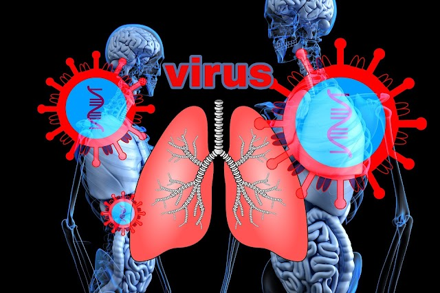वायरस क्या है ?तथा वायरस कि खोज किस ने कि थी?/virus kiya hai /virus ki khoj kisne kiya thi