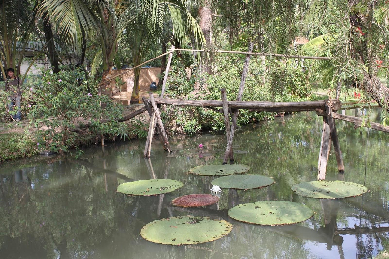 Binh Quoi tourist village 7