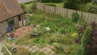 Overview of Adam's garden