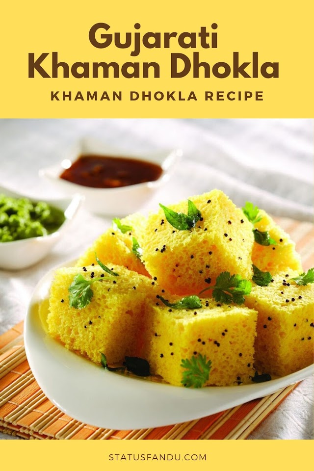 How To Make Gujarati Khaman Dhokla - Recipe