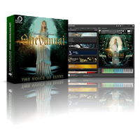 Best Service Shevannai: the Voices of Elves KONTAKT Library