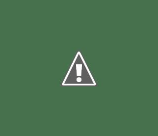 International Organization for Migration - CVAC Client Service Assistant