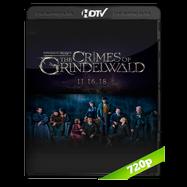 Animales fantásticos: Los crímenes de Grindelwald (2018) HDRip 720p Audio Dual Latino-Ingles
