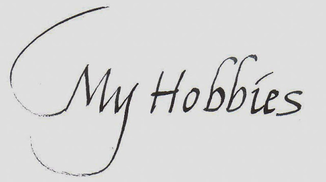 10 Lines on My Hobby in English | Few Important Lines on My Hobby in English