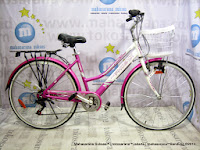City Bike Phoenix NP116 Alloy 6 Speed 26 Inci