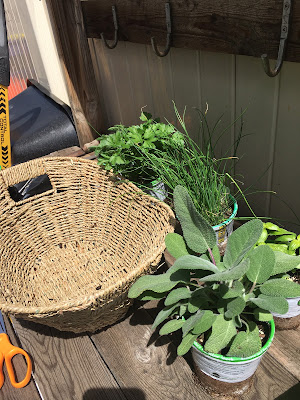 How to make a Herb basket- The Style Sisters, Fresh herb basket