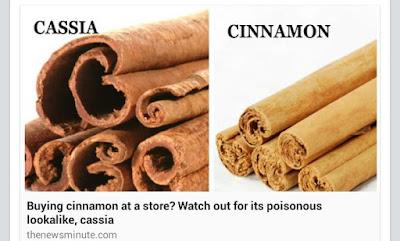 Image result for perbezaan cinnamon