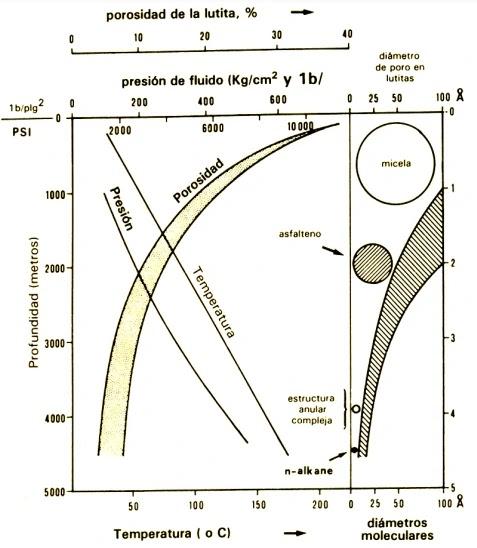 Migración de los Hidrocarburos - Interrelación de diversos parámetros físicos con el aumento de la profundidad de sepultamiento