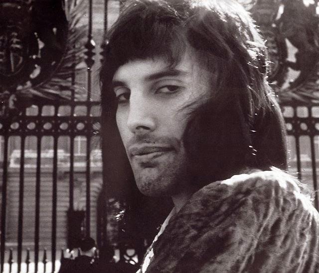 Freddie Mercury (fotos Tomadas Por Joseph Stevens En 1974