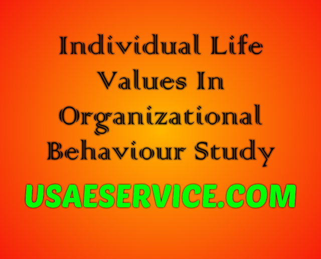 Individual Life Values In Organizational Behaviour