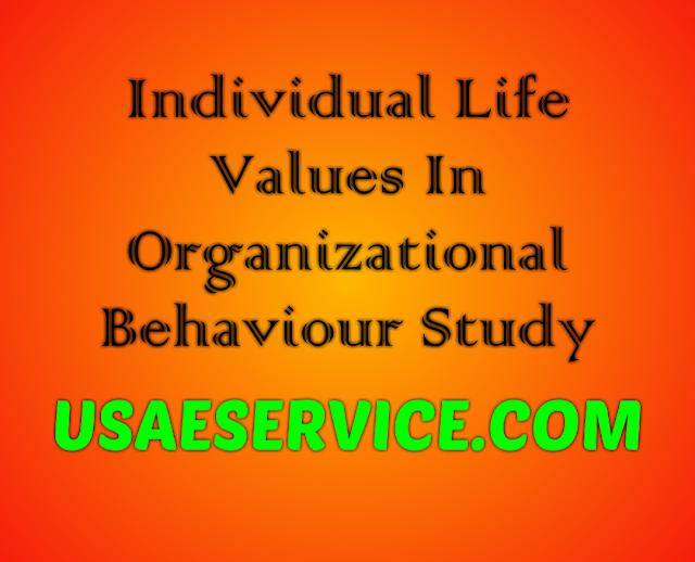 Individual Life Values In Organizational Behaviour