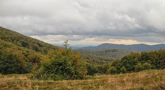 Widok w kierunku pasma granicznego z przełęczy przed Wielkim Jasłem.