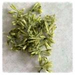 http://www.foamiran.pl/pl/p/srodki-do-kwiatow-zielone-/456