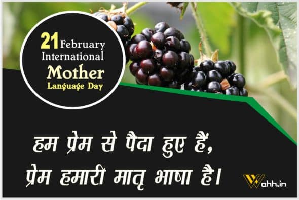 International Mother Language Day Quotes Hindi