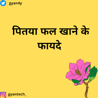 benefits of dragon fruit in hindi