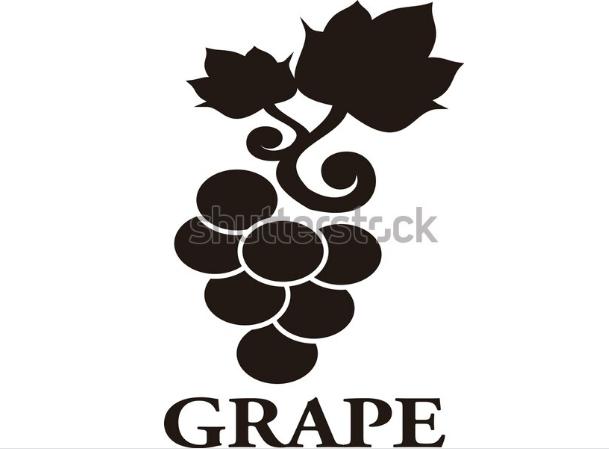 illustration style grape black