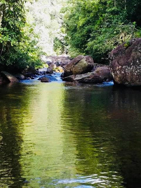 සිත නිවන දෙදියගල ආරණ්ය සේනාසනය 🌿🌱🍃 🙏☸️ (Dediyagala Aranya Senasanaya) - Your Choice Way