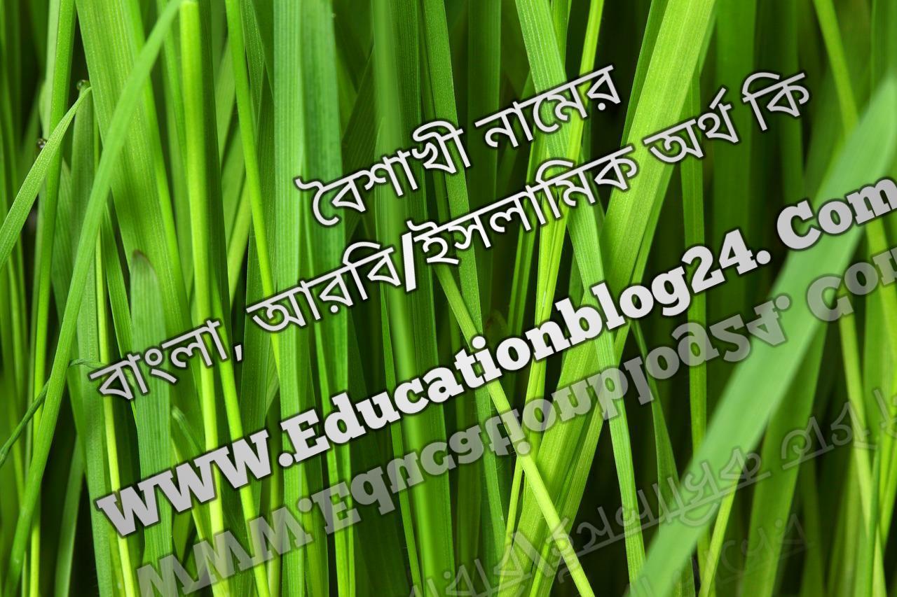 Boishaki name meaning in Bengali, বৈশাখী নামের অর্থ কি, বৈশাখী নামের বাংলা অর্থ কি, বৈশাখী নামের ইসলামিক অর্থ কি, বৈশাখী কি ইসলামিক /আরবি নাম