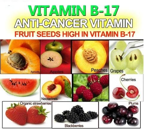 6 Sumber Alami Vitamin B17 Yang gampang sekali ditemukan di sekitar Kita