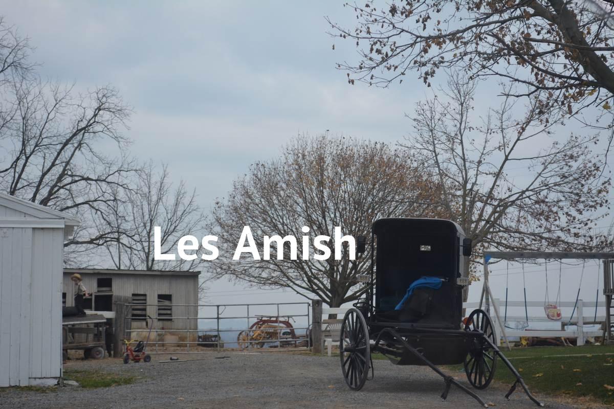 Photo campagne Amish