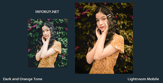 Tutorial Lightroom Dark and Orange Tone