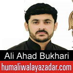 https://www.humaliwalayazadar.com/2019/10/ali-ahad-bukhari-nohay-2020.html