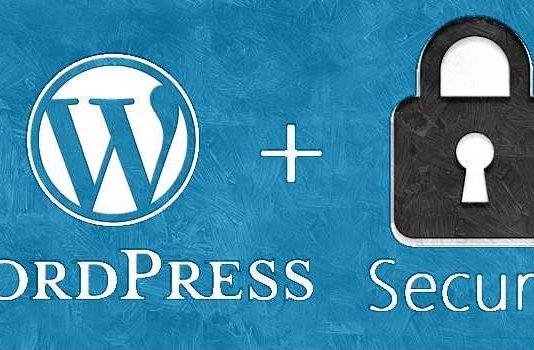 Keep Your WordPress Website Secure