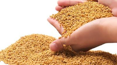 Cách chữa hôi miệng tại nhà bằng hạt cỏ cà ri