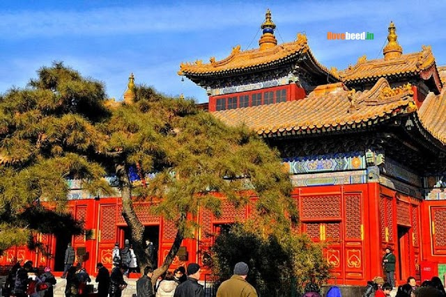 Beijing Hutong Half Day Walking Tours