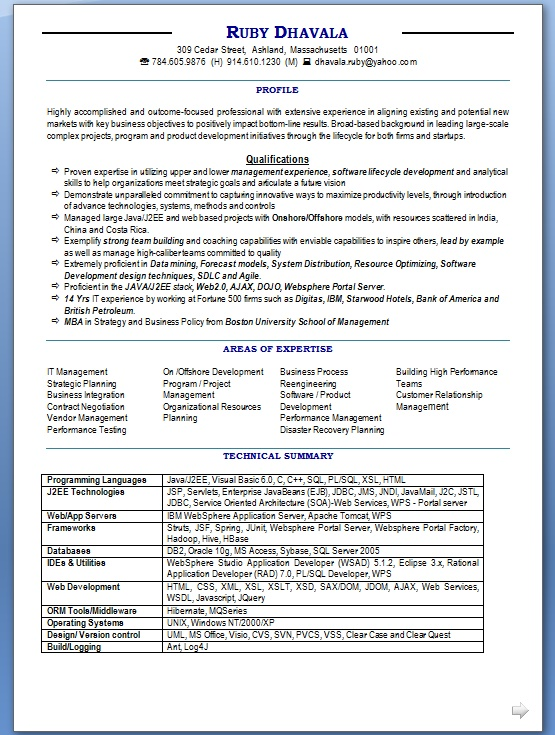 program manager resume model in word format free download