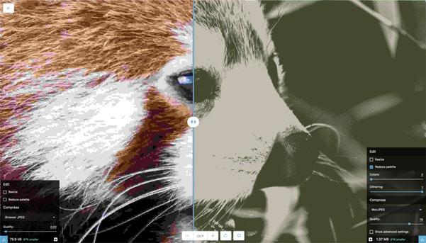 Squoosh ضغط المثال 2 صورة