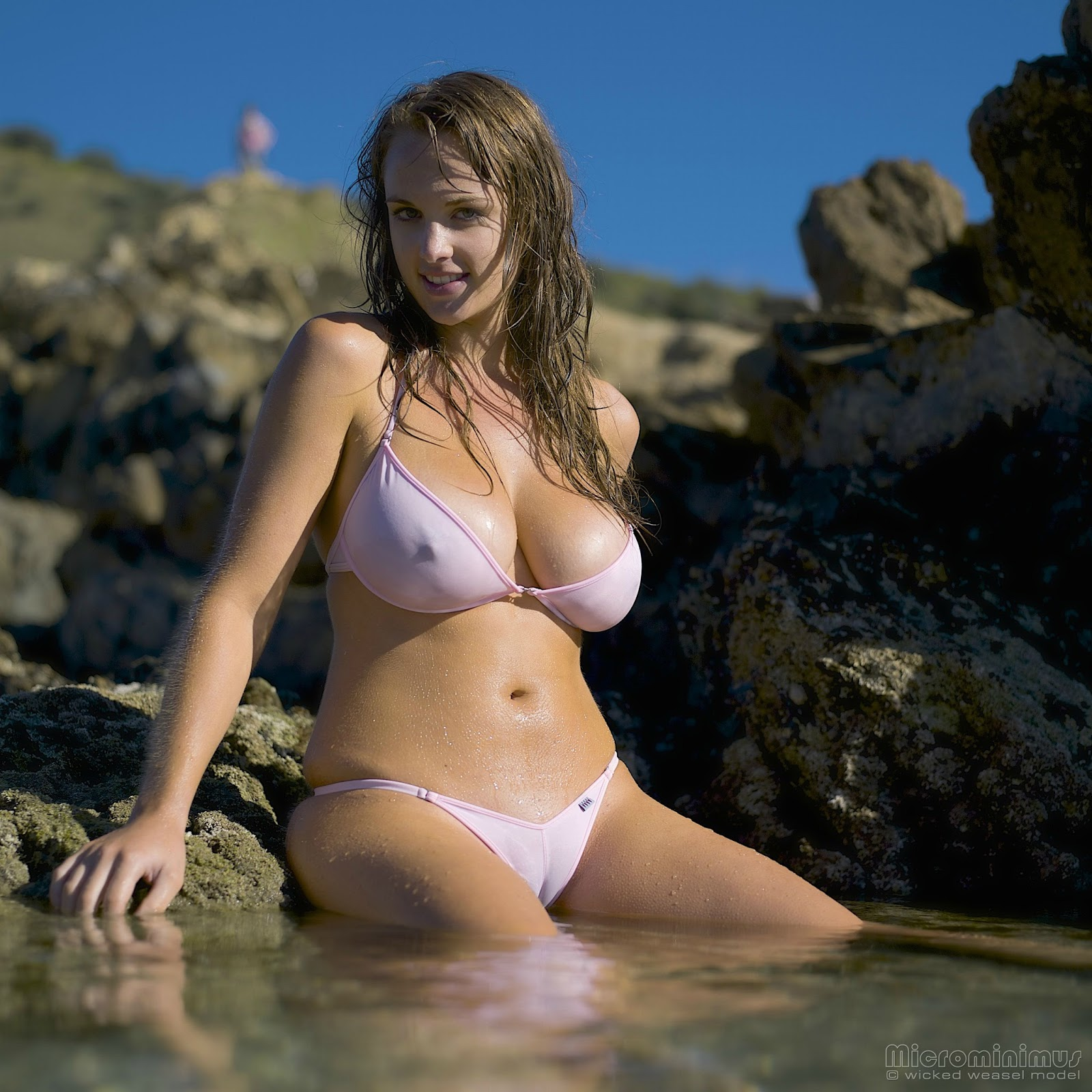 Know, how wicked weasel bikini models