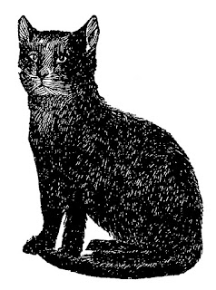 cat black image digital download