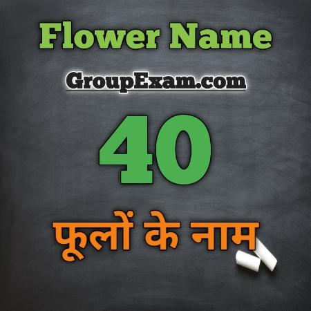 40 Flower Name Hindi and English फूलों के नाम हिंदी और अंग्रेजी में - Group Exam