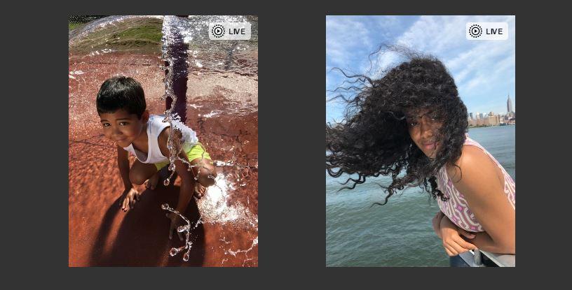 LivePhotosKit JS-JavaScript-based-API-for-Live-Photos-on-web-apple