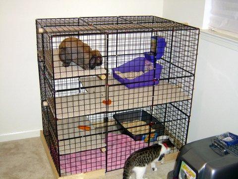 Bunny Homes Cages Amp Condos