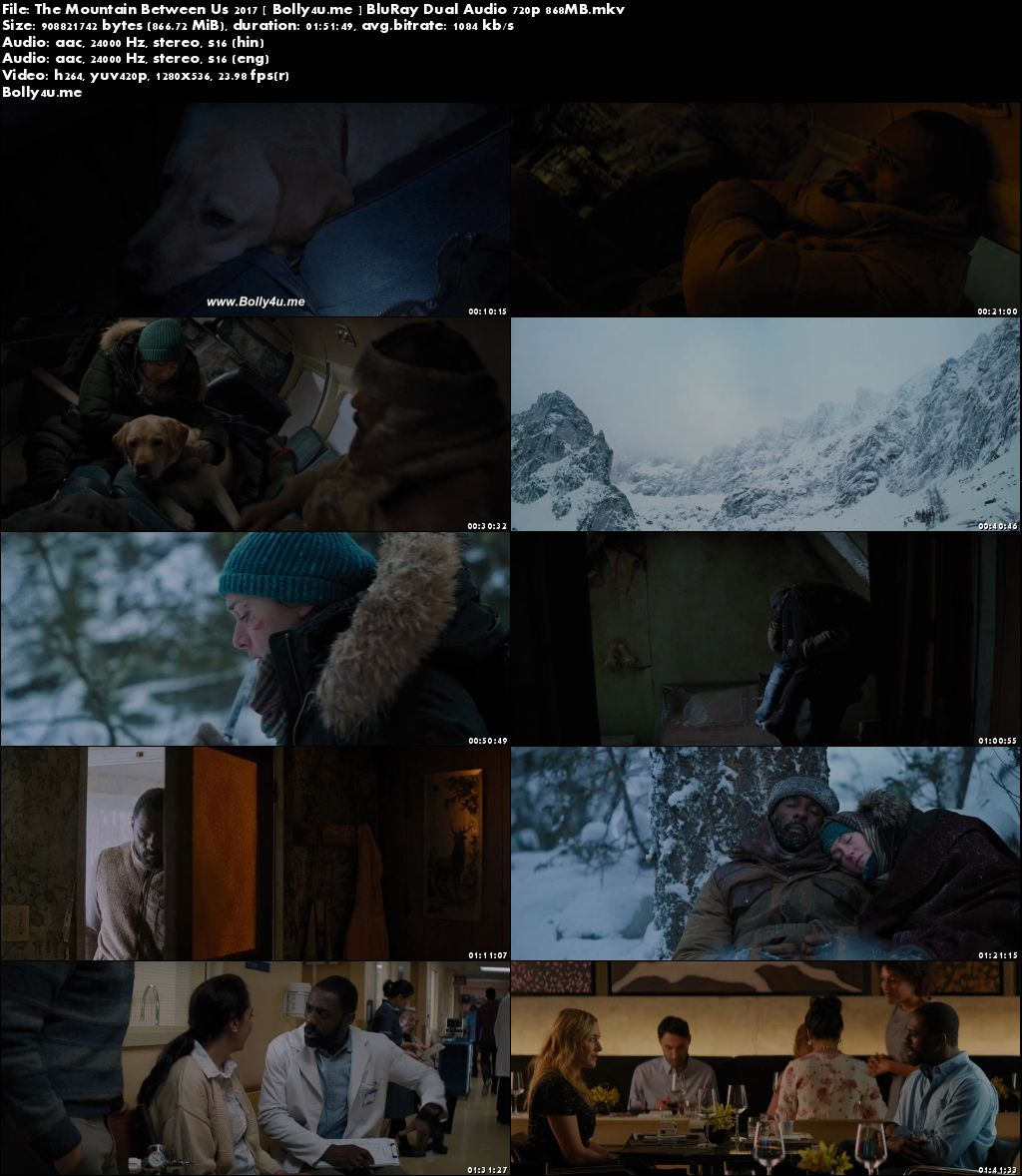 The Mountain Between Us 2017 BluRay 350MB Hindi Dual Audio 480p Download