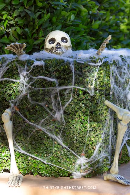 halloween skeleton outdoors