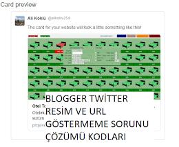 Blogger Yazılarım Twitter'da Link ve Resim Görünmüyor.