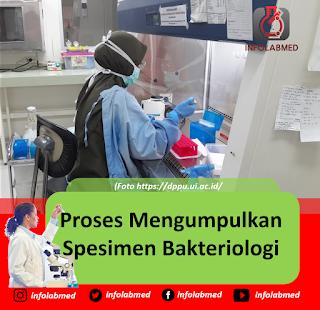 Proses Mengumpulkan  Spesimen Bakteriologi