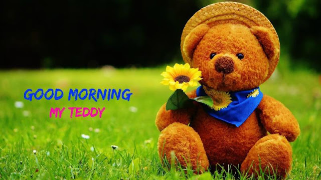 Good Morning Teddy Bear