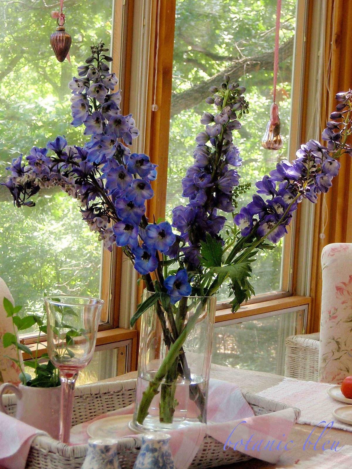 Botanic Bleu Blue Delphiniums