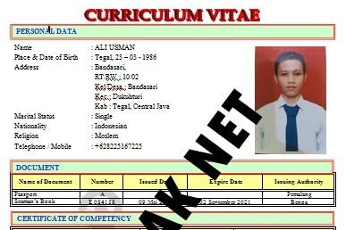 Kumpulan Contoh Curriculum Vitae atau CV