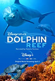 Download Film Dolphin Reef (2020)