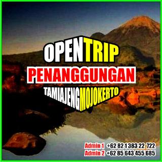 Open Trip Gunung Penanggungan 2021 Via Tamiajeng Mojokerto 2H1M