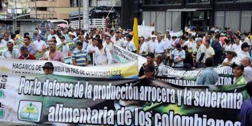 hoyennoticia.com, 'Arroceros no soportamos más'