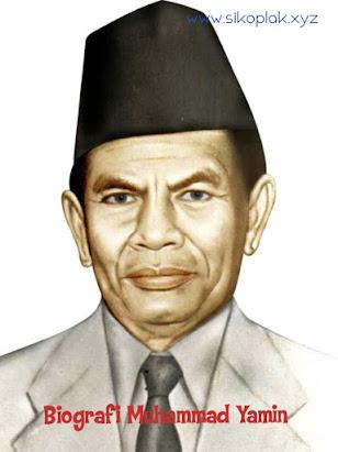 Biografi Muhammad Yamin, Peran Muhammad Yamin