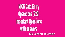 NIOS DATA Entry Operations (229) | Important Questions With Answers(20-21)