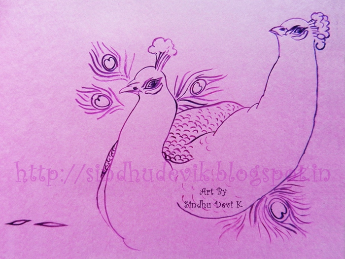 Two male peacocks in dancing mood. Drawn the outlines in lavender colour